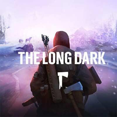 Juego The Long Dark